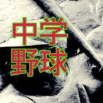 鳥取野球は、中学校まではレベルが高い。イモトアヤコ、石破茂についても考察。