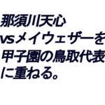 那須川天心がメイウェザーに敗北した件に思う【甲子園鳥取代表に当てはめて】